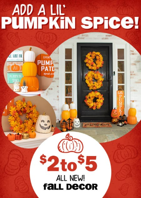 All New Fall Decor at $2 to $5