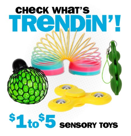 $1 - $5 Sensory Toys from Five Below