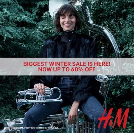 60% off Winter Sale
