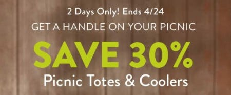 30% Off Picnic Totes & Coolers from Cost Plus World Market