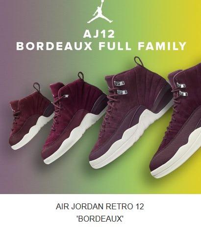 Air Jordan Retro 12 'Bordeaux'