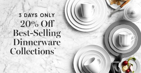 20% Off Best-Selling Dinnerware Collections from Williams-Sonoma