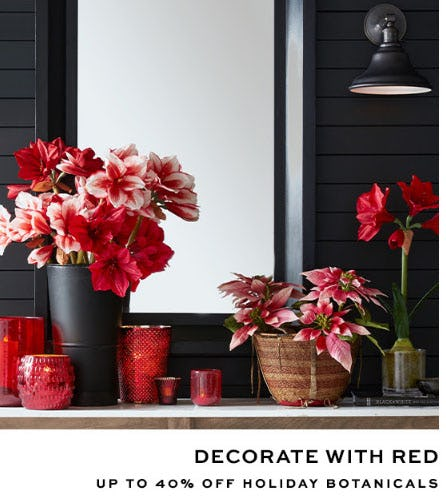 Up to 40% Off Holiday Botanicals from Pottery Barn