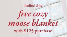 Free Blanket with any $125 Purchase from Abercrombie Kids