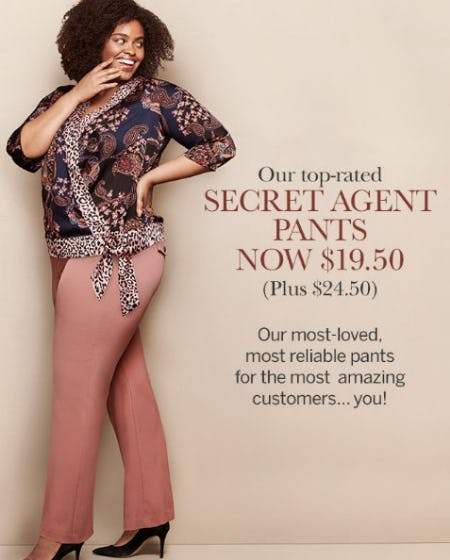 Secret Agent Pants Now $19.50 from Dressbarn