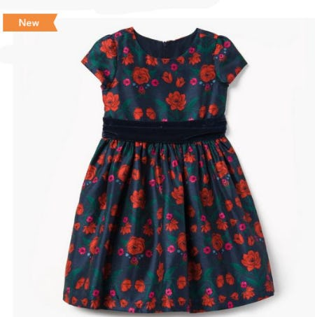 Rose Print Dress from Gymboree