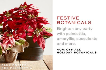 40% Off All Holiday Botanicals from Pottery Barn