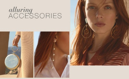 Our Alluring Accessories from BCBG