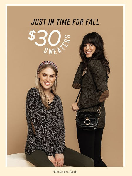 $30 Sweaters from francesca's