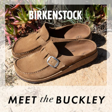 The Birkenstock Buckley from DSW Shoes