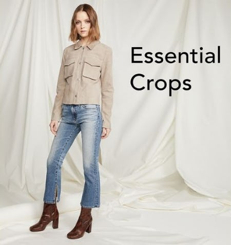 Crops: A Trending Silhouette