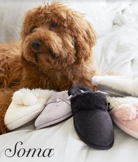 $15 Slipper With PJ Purchase from Soma Intimates