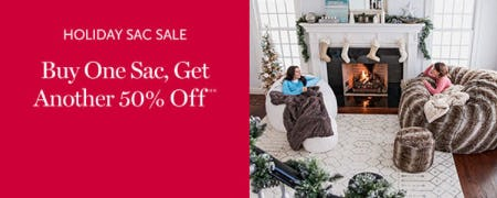 Holiday Sac Sale from Lovesac