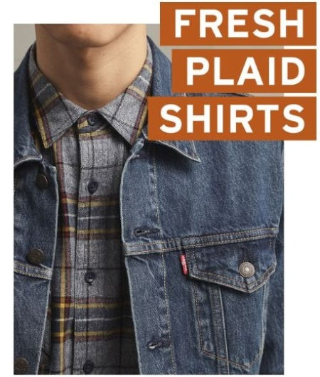 Plaid Shirts You'll Live In from The Levi's Store