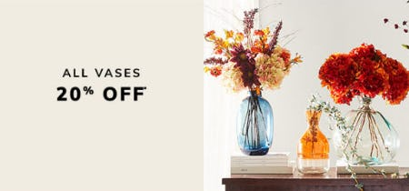 20% Off All Vases from Pier 1 Imports