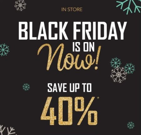 Black Friday Sale up to 40% Off