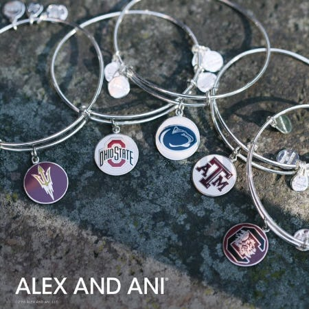New Collegiate Charms from ALEX AND ANI