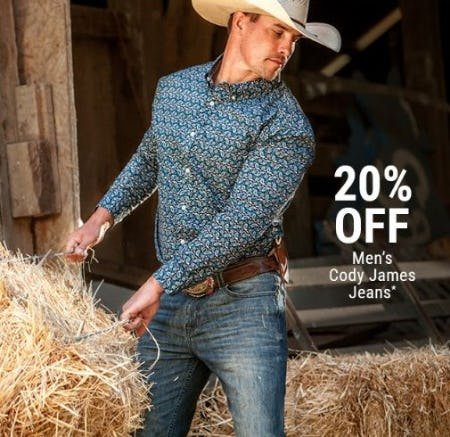 20% Off Men's Cody James Jeans from Boot Barn Western And Work Wear
