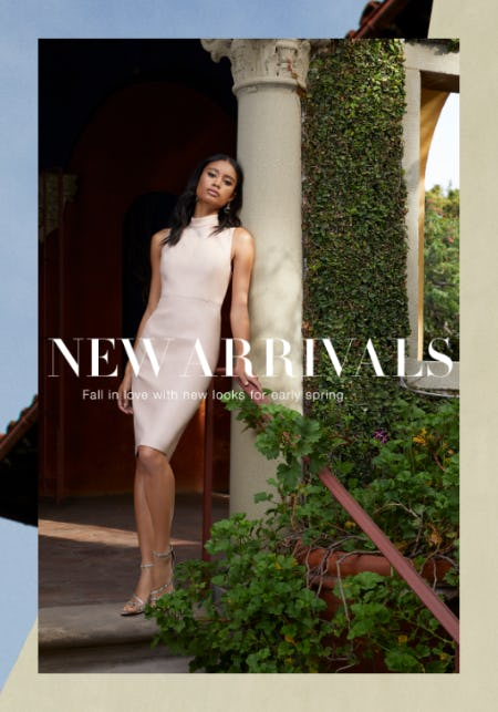 Now In: Fresh Styles for 2020 from BCBG