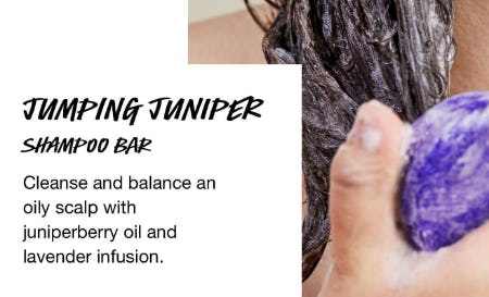 Jumping Juniper Shampoo Bar from LUSH