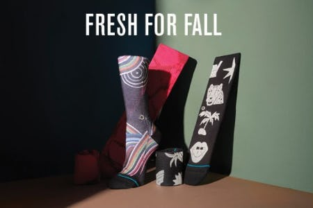 Cozy, Bright, and Super Fresh Women's Arrivals from STANCE