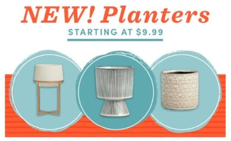 New Planters Starting at $9.99 from Cost Plus World Market