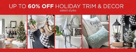 Up to 60% Off Holiday Trim & Decor