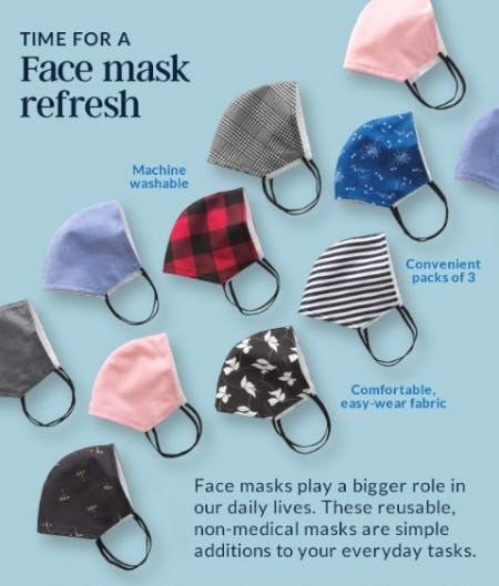 Face Mask Refresh from Lands' End