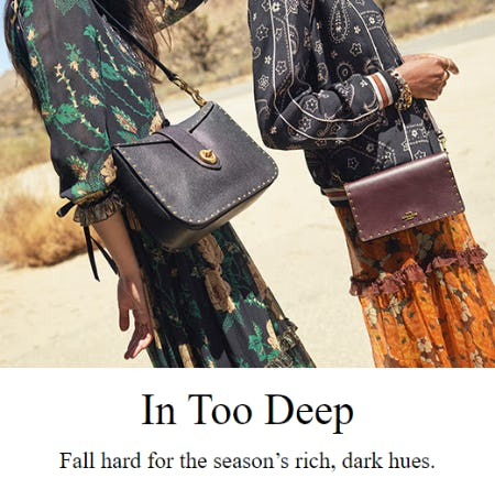 Fall's Trending Tones from Coach