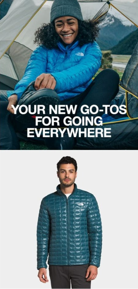 Meet Our Newest Arrivals for Fall from The North Face