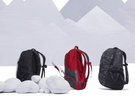 Classic Backpacks Built for Everyone from The North Face