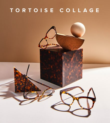 Introducing: Tortoise Collage