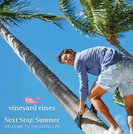 Next Stop: Summer from Vineyard Vines