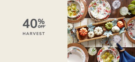 40% Off Harvest from Pier 1 Imports