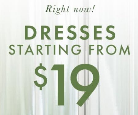 Dresses Starting from $19 from Hanna Andersson