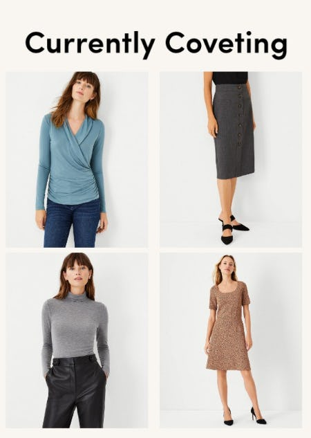 Shop These Just-In Styles from Ann Taylor
