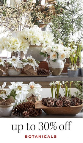 Up to 30% Off Botanicals from Pottery Barn
