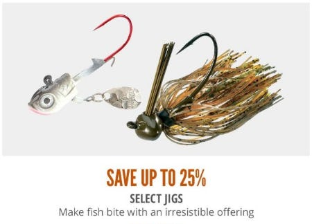 Up to 25% Off Select Jigs