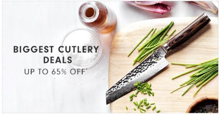 Biggest Cutlery Deals up to 65% Off from Williams-Sonoma