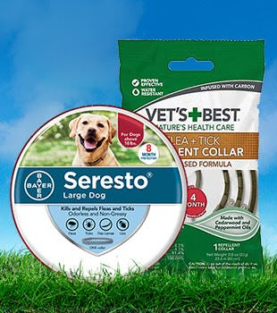Flea & Tick Collars from Petco Supplies & Fish