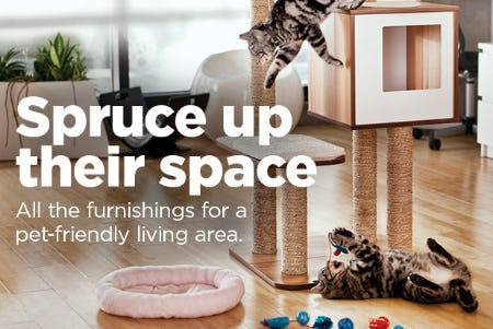 Pet-Friendly Furnishing from Petco Supplies & Fish