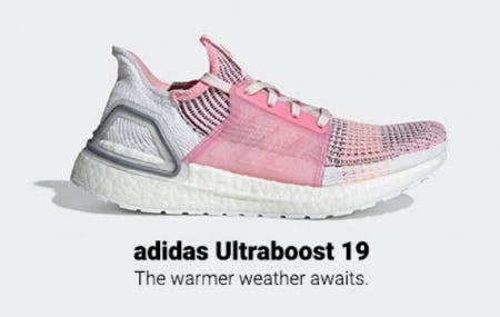 Adidas Ultraboost 19 from Lady Foot Locker