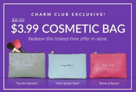 $3.99 Cosmetic Bag from Charming Charlie