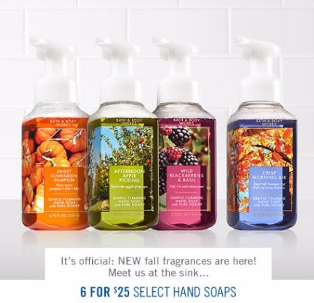 6 for $25 Select Hand Soaps