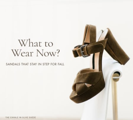 Shop Our Great Sandals