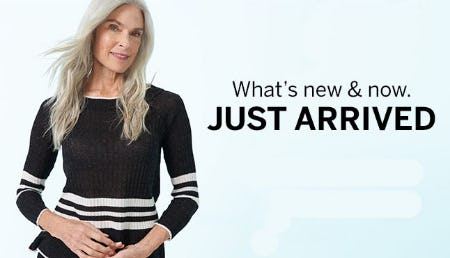 Shop New Arrivals from Dressbarn