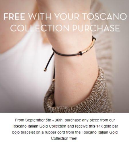 Free 14k Gold Bar Bolo Bracelet