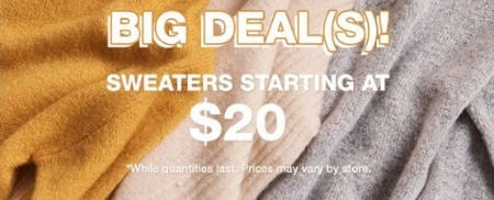 Sweaters Starting at $20