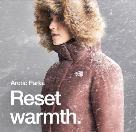 Reintroducing the Arctic Parka