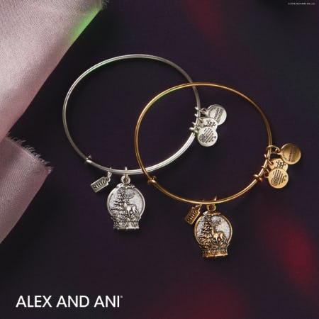 Limited Edition 2018 Snow Globe from ALEX AND ANI